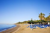 Sun Loungers On A Sandy Beach In Marbella