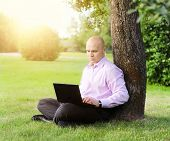 man with laptop sitting near a tree
