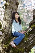 Ten Year Old Girl Sitting In Cherry Tree Covered In Blossoms