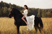 Girl In A Long Dress Riding A Horse, A Beautiful Woman Riding A Horse In A Field In Autumn. Country poster