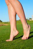 beautiful female legs on grass
