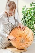Woman In The Kitchen Wearing A Kitchen Apron Cuts The Pumpkins With A Long Kitchen Knife. poster