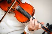 Violin Playing Viola Musician Playing . Man Violinist Classical Musical Instrument  Fiddle . poster