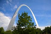 St. Louis Arch And Tree