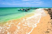 stock photo of yucatan  - Rural Yucatan Peninsula beach photo showing some old boats used for fishing - JPG