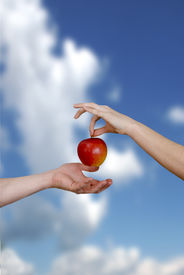 stock photo of adam eve  - Variant of a bible theme. Eve transfers an apple to Adam. ** Note: Slight graininess, best at smaller sizes - JPG