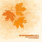 Late autumn vector background