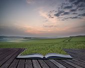 Creative Concept Pages Of Book Summer Sunrise Over Landscape Of Fresh Wheat Field