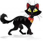 Black terrible Halloween cat
