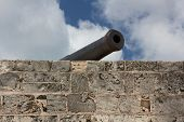 Cannon At Fort Montagu