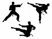 image of shotokan  - Karate martial art silhouettes of men in various karate or other martial art poses including high kick and flying kick - JPG