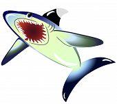 EPS10 vector illustration. Shark isolated on a white background
