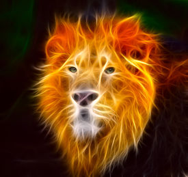 pic of lions-head  - The King of the Jungle with his chilling stare - JPG