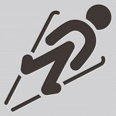 pic of nordic skiing  - Winter sport icons  - JPG