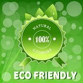 image of summary  - Ecology Liszt Summary Business Environmentally friendly Marketing Product Label Plant Vector Nature - JPG