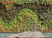 Flower And Plant Wall Vertical Garden