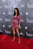 LAS VEGAS - APR 6:  Angie Harmon at the 2014 Academy of Country Music Awards - Arrivals at MGM Grand