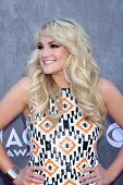 LAS VEGAS - APR 6:  Jamie Lynn Spears at the 2014 Academy of Country Music Awards - Arrivals at MGM