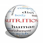 Nutrition 3D Sphere Word Cloud Concept