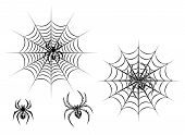 image of black widow spider  - Black danger spiders on web for tattoo design - JPG