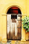 Arched Medieval Wooden Door