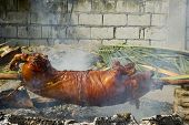 Lechon Or Roast Pig