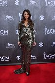 LAS VEGAS - APR 6:  Kelleigh Bannen at the 2014 Academy of Country Music Awards - Arrivals at MGM Gr