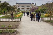 Botanic Garden Before Museum Of Natural History - Paris