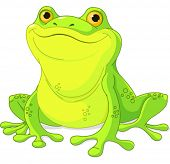 Illustration of cute green frog