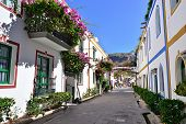 pic of climber plant  - Street with white houses colonia shown in Puerto de Mogan Spain - JPG