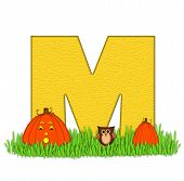 Alphabet Pumpkin Patch M