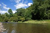 image of trout fishing  - Mountain trout fishing stream in northern Pennsylvania - JPG
