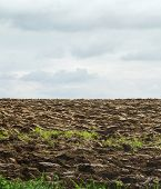Plowed Field And Sky With Clouds
