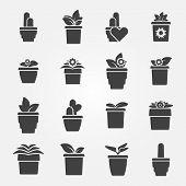 Houseplant icons set