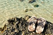 sea, shoes, coral reef