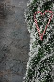 picture of candy cane border  - Christmas decorations  - JPG
