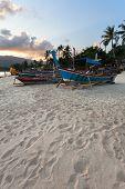 Beach, Boat, Sunset, Palm Tree