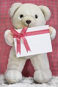 White teddy bear holding gift box with checkered bow for a christmas present, voucher or coupon