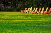 picture of lawn chair  - Row of lawn chairs on a green grass background in summer time