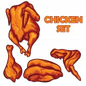 Chicken Set Illustration