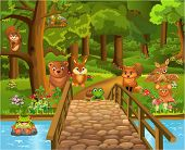 wild animals in the forest and a bridge in the foreground