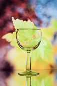 Wine Glass On Bright Background