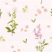 Flower Background - Seamless Floral Shabby Chic Pattern - in vector