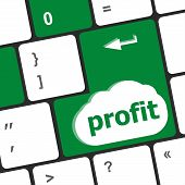 Profit Key Showing Returns For Internet Businesses