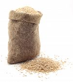 Small Bag Of Wheat Grains