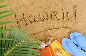 Hawaii Beach Background