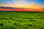 foto of kansas  - Sunset over the prairie land that is so important to the ranchers in the Flint Hills of Kansas - JPG