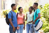 happy afro american university students chatting outdoors