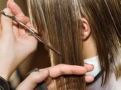 image of hair cutting  - Cutting hair of a girl at the hair studio - JPG