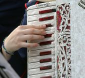 stock photo of accordion  - young woman plays the ancient accordion keyboard - JPG